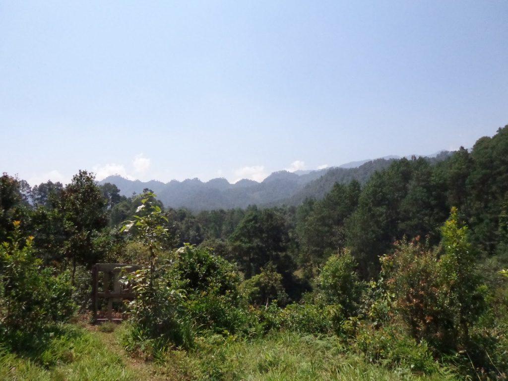 Ixil Region